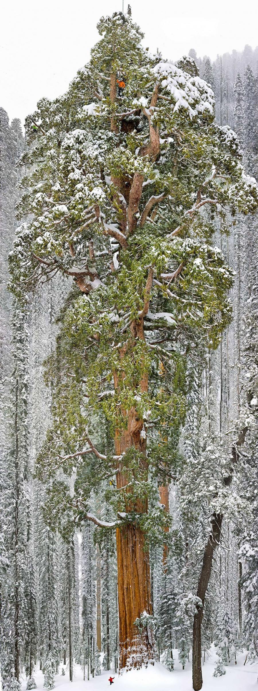 7631910-R3L8T8D-900-small-man-grand-nature-landscape-photography-24