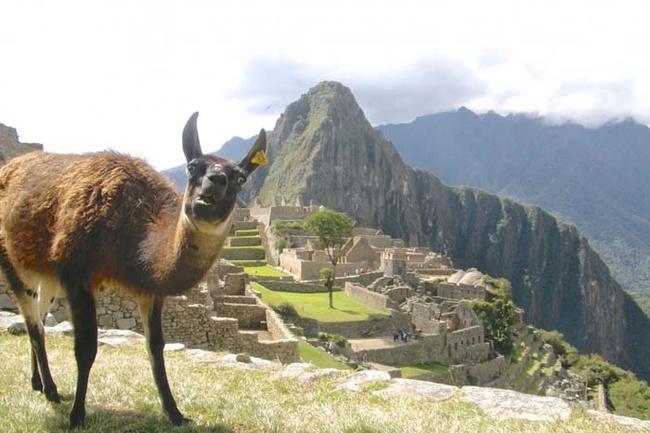 Сфотографируй меня на фоне Мачу Пикчу.