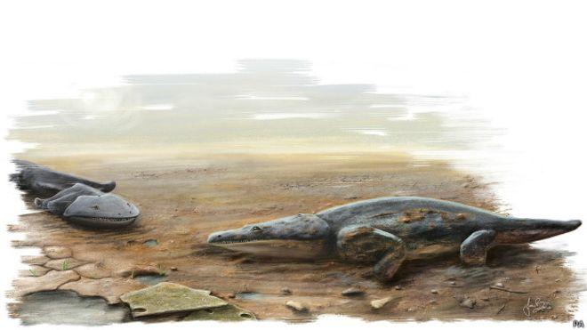 150324084257_metoposaurus_624x351_pa