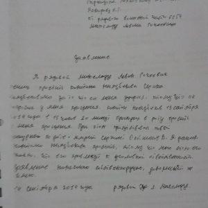 Заявление Левана Микеладзе