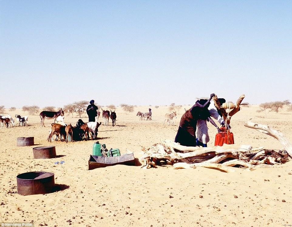 tuaregi-26-11