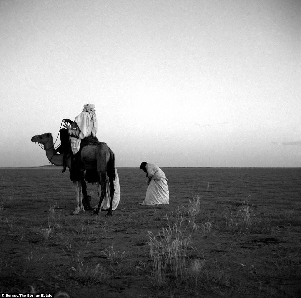 tuaregi-26-12