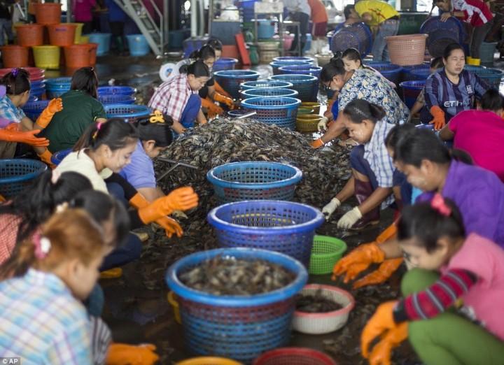 Работницы сортируют креветки на рынке в Махачае.