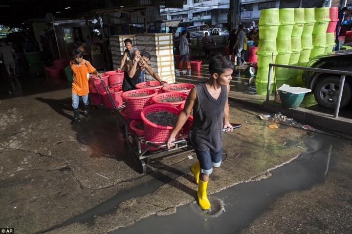 Рабочий везёт корзины с креветками на рынок морепродуктов в Махачае. Около половины всех креветок Таиланд продаёт США.