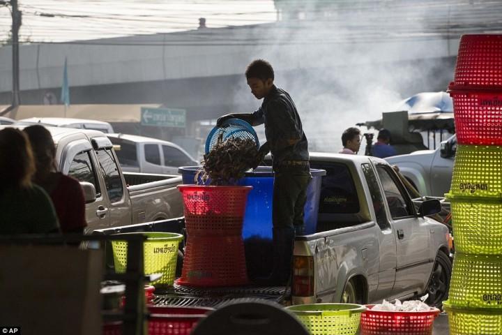 Рабочий выгружает креветок на рынке морепродуктов в Махачае.