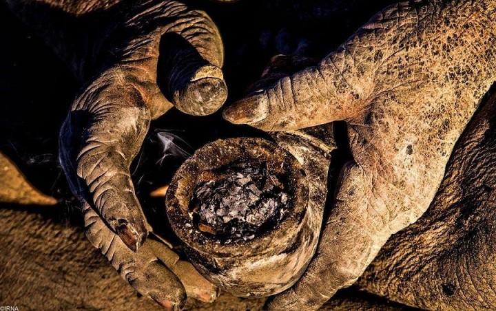 Так выглядят руки человека, который отказался от личной гигиены.