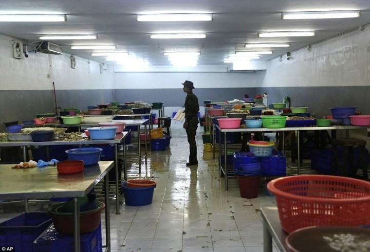 Тайский солдат стоит среди разделочных столов на фабрике по чистке креветок. Одна из работниц рассказала, что трудится на этой фабрике уже восемь лет.