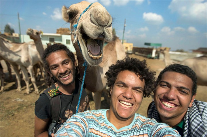 PIC FROM HOSSAM ANTIKKA/ CATERS NEWS - (PICTURED: L to R Maissra Sallah, Hossam Antikka and Karim Abdelaziz) - This camel clearly didnt get the hump about having its picture taken after posing for a selfie.Pictured joining in with the group photo, the hilarious photo shows the delighted desert dweller smiling happily for the camera. Captured by friends Hossam Antikka, 20, Karem Abdelaziz, 22, and Misara Salah, 24, the group spent around half an hour feeding the camel before deciding to take a snap of their new found friend. SEE CATERS COPY