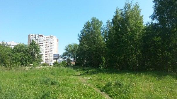 """Сквер, на территории которого планируется возведение ТЦ """"Астана"""". Фото: vk.com"""