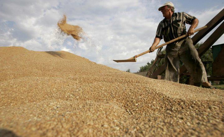 Фото с сайта agrarian.com.ua