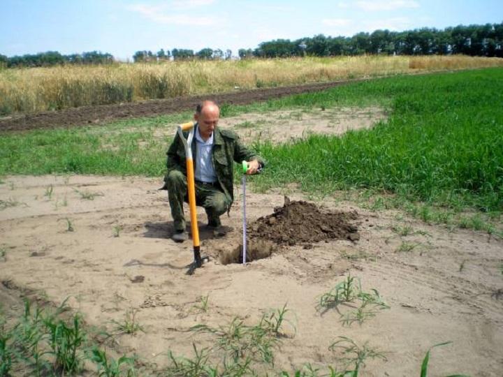 soil-fertility-photo-07