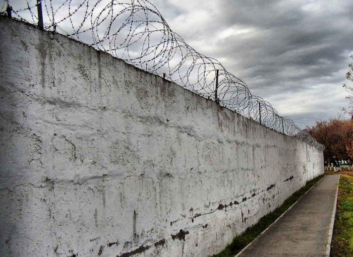 колония стена