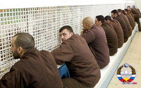 Тюрьма Хадарим