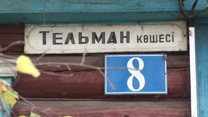 ulitsa-telmana
