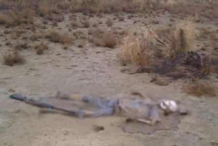 Фото скелета из социальных сетей принадлежит пропавшему годом ранее охотнику