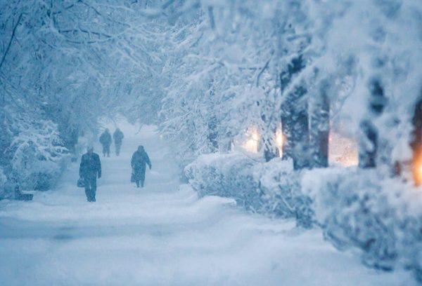 Погода 14 декабря: снегопады и ветер