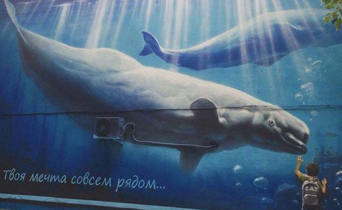 Изображение на стене офиса в Бишкеке