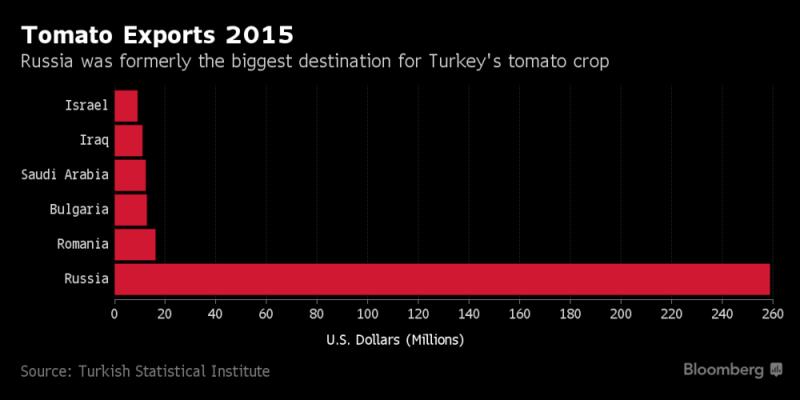 Президент Турции запланировал визит в Украинское государство