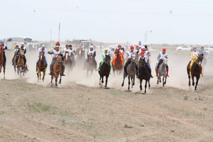 верхом, кони, лошади, соревнования