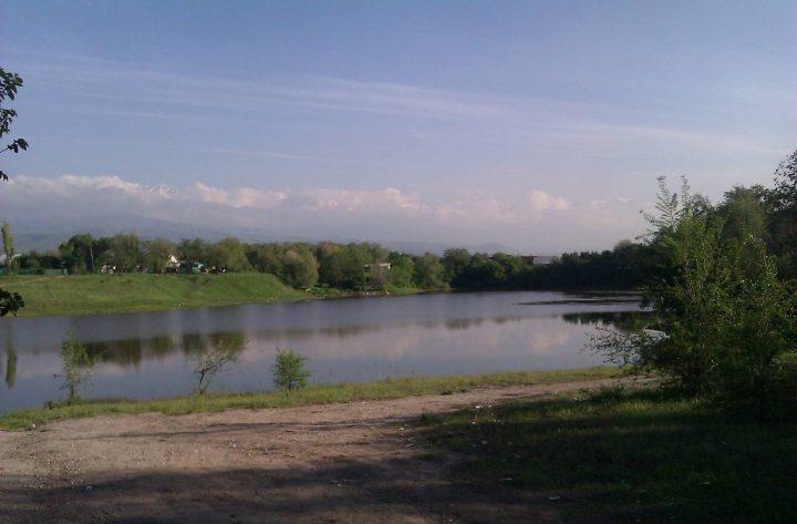 Аэропортовское озеро в Алматы. Источник: vse.kz