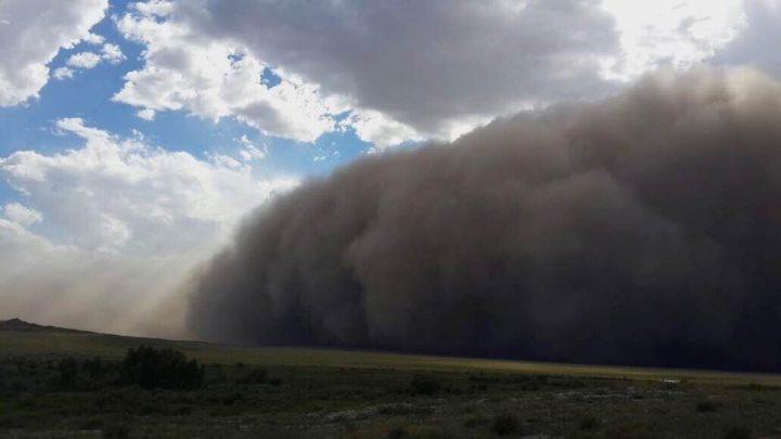 Пыльная буря в Калбатау. Кадр видео из соцсетей