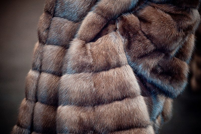 shuba - California banned the fur