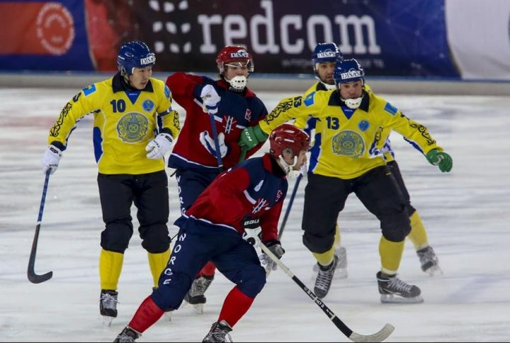 Фото: bandy-vm2018.ru. хоккей с мячом