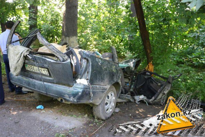 дерево упало на машину двое погибли алматы