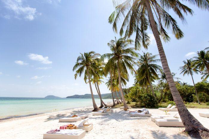 пальмы тропики туризм вьетнам