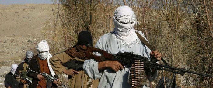 талибы террористы