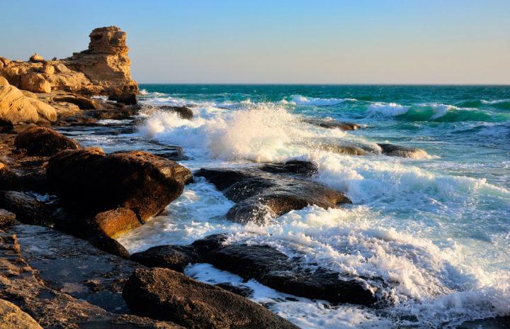 Берег Каспийского моря. Фото из открытых источников