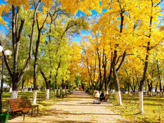золотая теплая осень