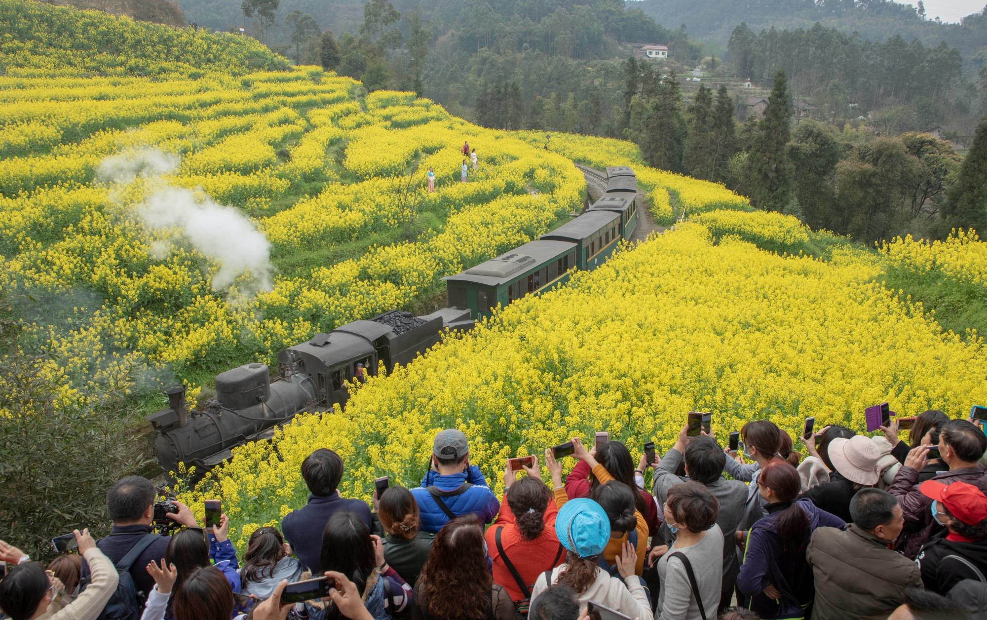 Рапсовые поля в Китае
