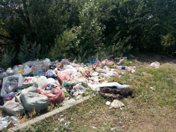 Министр Мирзагалиев призвал казахстанцев вместе очистить места отдыха от мусора