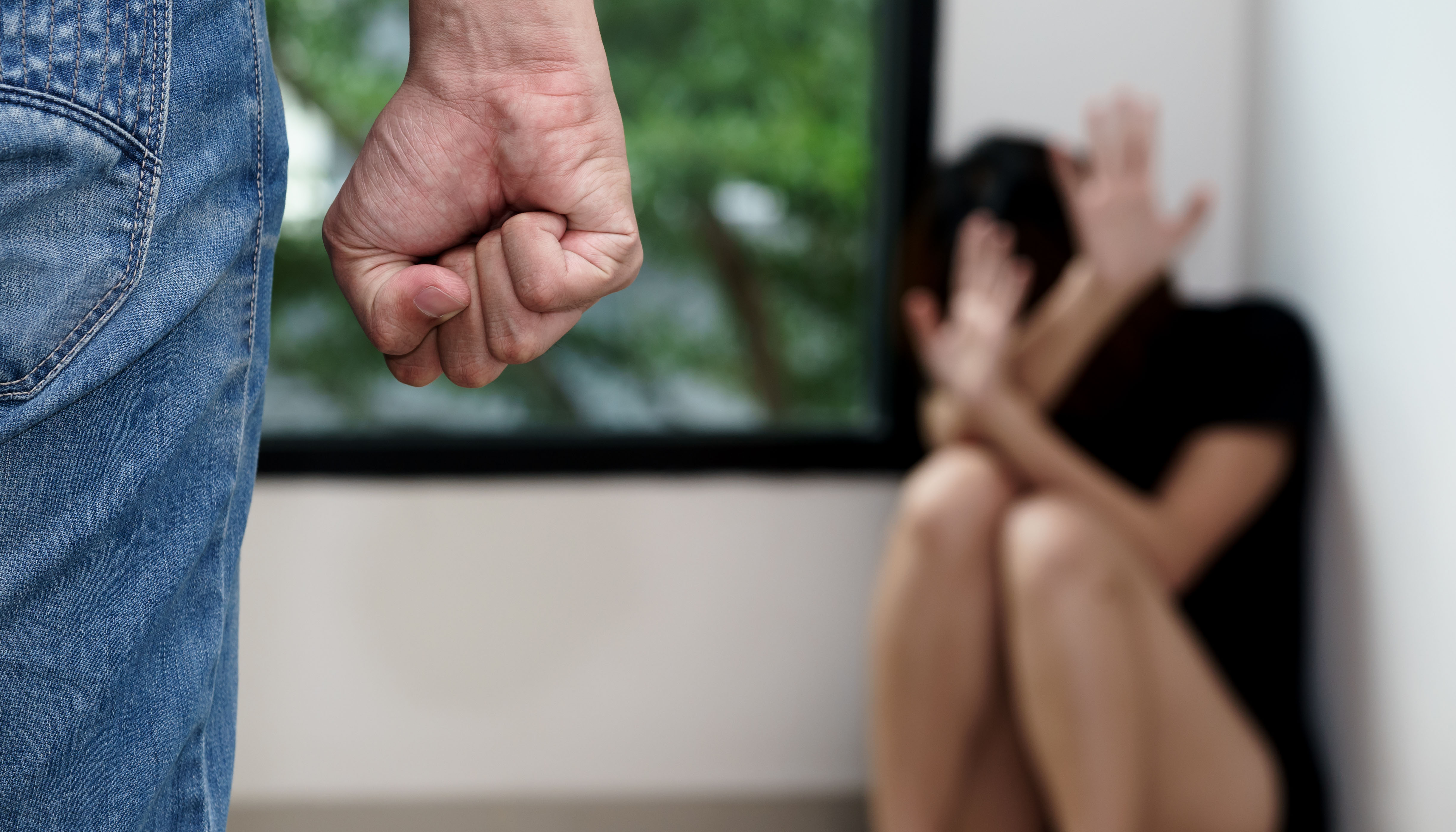 0bce8bc1b81f162fdbc06af6629d991f - The law on domestic violence — how it should work in the US