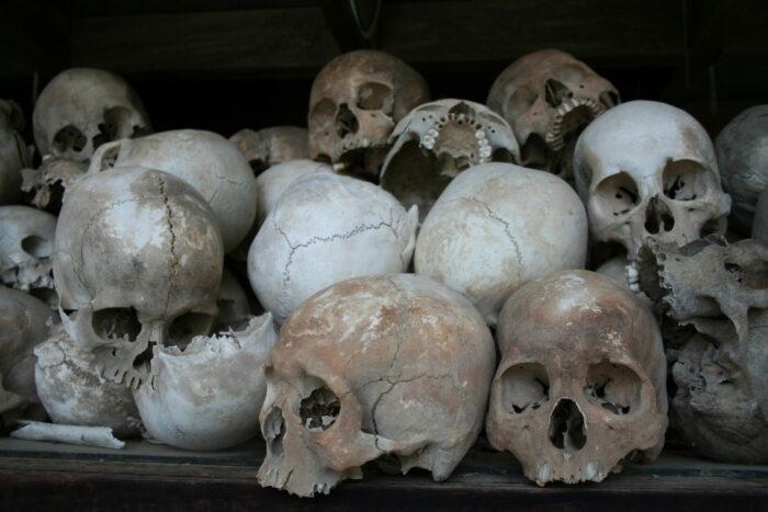 черепа, поля смерти