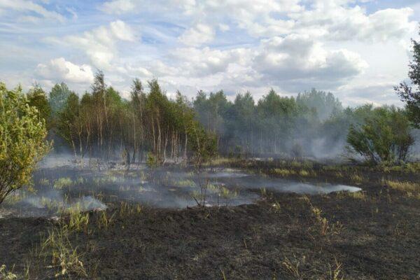 d3b9b28bd4c4451d1499ab8a5acff3c1 600x400 - The storm triggered a forest fire in Kostanay region